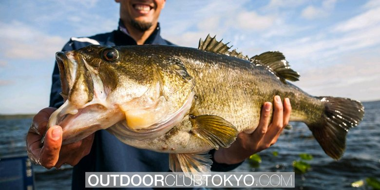 Largemouth Bass Fishing