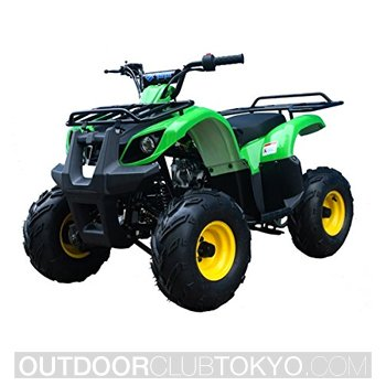 TAO TAO ATV 125cc Fully Automatic With Reverse