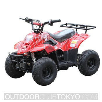 Tao Tao 110cc Four Wheelers 6 Inch Tires ATV